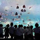海立方海洋公园
