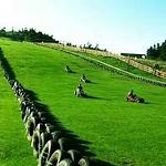 漫天岭国际滑草场