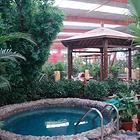 金孔雀温泉欢乐水世界