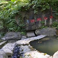 樱花谷森林温泉