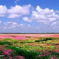 若尔盖湿地自然保护区