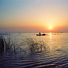 微山湖湿地红荷旅游区
