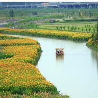 华阳湖湿地公园