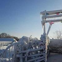 南湖湿地冰雪世界