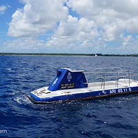 蓝色潜水艇