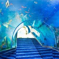 亚龙湾瑞德姆海底演艺主题餐厅