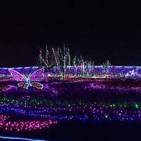 兴义润黔花海国际灯光节