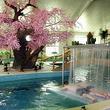 承德枫水湾国际森林温泉城