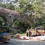 清迈动物园