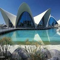 瓦伦西亚海洋馆