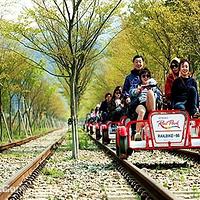 济州岛铁路自行车