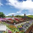 仙凤三宝农业休闲观光园
