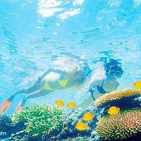 凯恩斯外海大堡礁