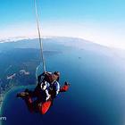 罗托鲁瓦陶波高空跳伞体验