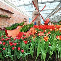 第七届北京农业嘉年华