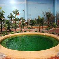 清水湾温泉