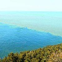 黄渤海分界线