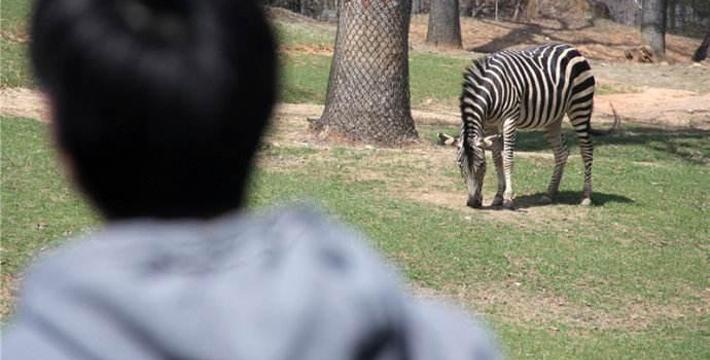 濮阳市中心动物园