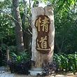 霸王岭国家森林公园