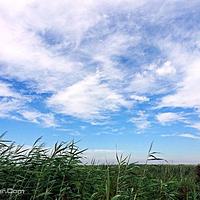龙安桥国家湿地公园