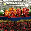 瑞金九丰现代农业博览园