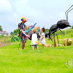 中国彩灯之乡第三届草雕节