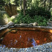金方森林温泉