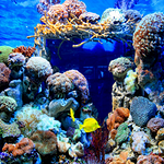 海马·海洋奇幻馆