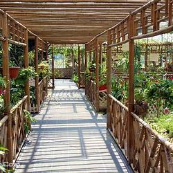 长廊生态园