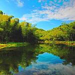 黄柏山国家森林公园