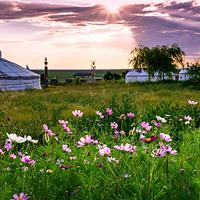鄂尔多斯草原旅游区
