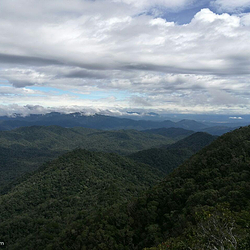 尖峰岭国家森林公园