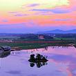 洋沙湖国际旅游度假区