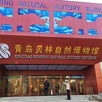 青岛贝林自然博物馆