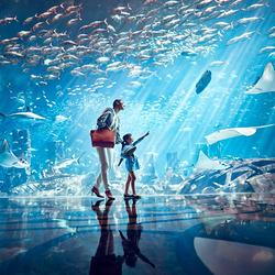 亚特兰蒂斯失落的空间水族馆