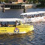 City Tours鸭子船