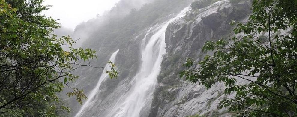 大鄣山卧龙谷:观瀑戏水