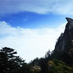 木王国家森林公园