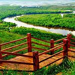昭苏中央湿地公园
