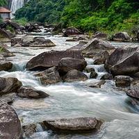 萍乡石溪百鸟园