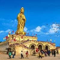 上海黄浦--普陀旅游集散中心(城北站)