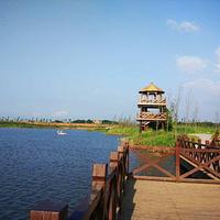 洋沙湖湿地公园