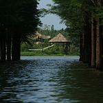 仙桃梦里水乡景区