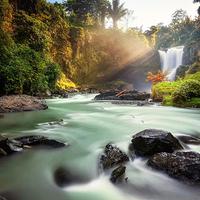 乌布森林瀑布观景(Tegenungan瀑布)