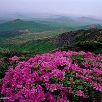 汉拿山国立公园