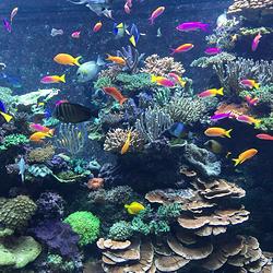 亳州海洋世界