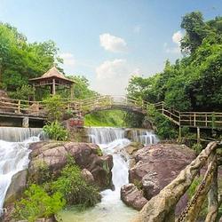 紫莲森林度假村