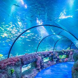 沈阳海洋探索中心