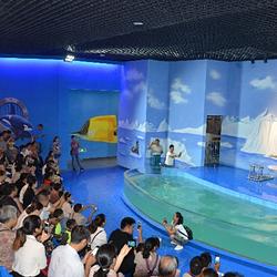 九丰海底世界