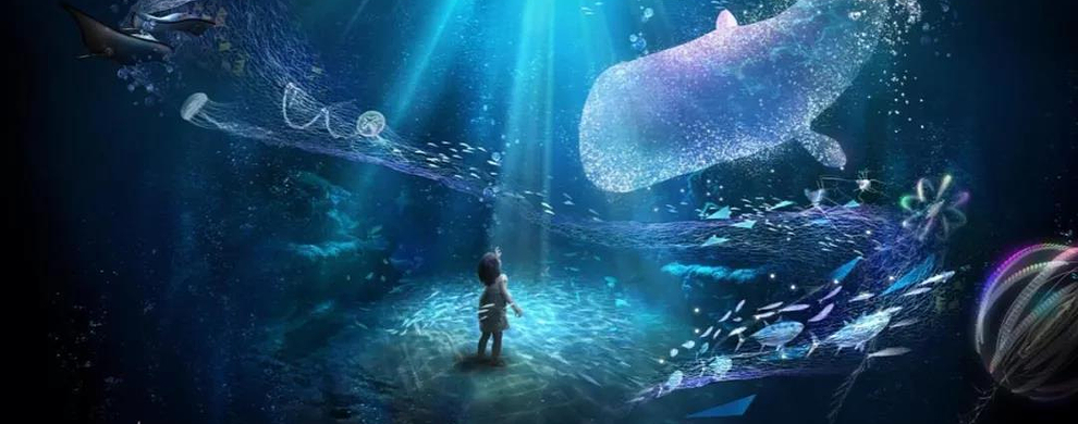 乐在新奇 奇幻海洋新体验